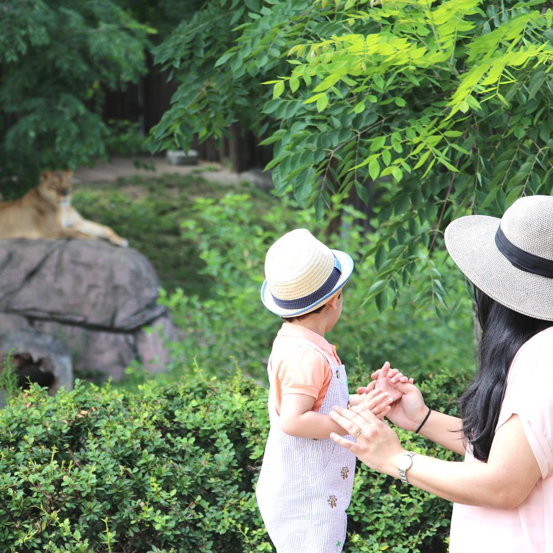 Summer First Zoo Trip